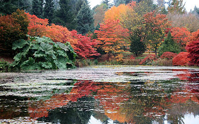 Photograph - Autumn In Vandusen Botanical Garden by Gerry Bates