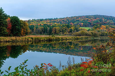 Photograph - Autumn In Vermont by Sharon Seaward