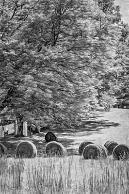 Autumn In West Virginia - Paint Bw Print by Steve Harrington