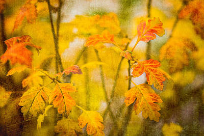 Autumn In Yellow Print by Alexander Senin