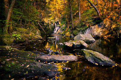Photograph - Autumn Is Calling by Craig Szymanski
