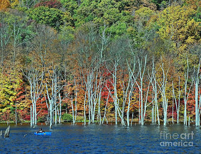Photograph - Autumn Kayak 2 by Allen Beatty