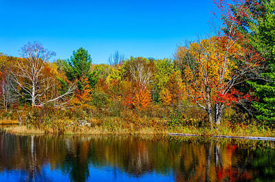 Autumn Photograph - Autumn Lake by Steve Harrington
