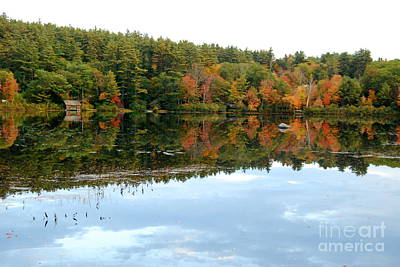 Photograph - Autumn Lakeside by Eunice Miller