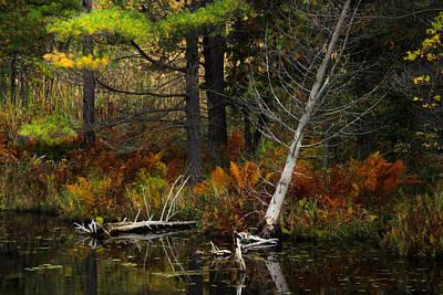 Photograph - Autumn Landscape 1 by Jim Vance