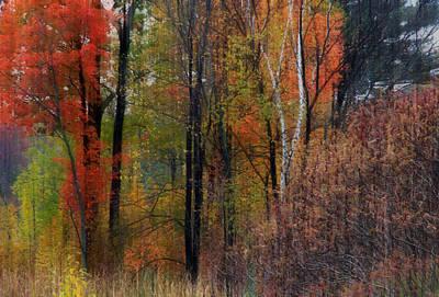 Photograph - Autumn Landscape 21 by Jim Vance
