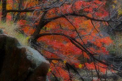 Photograph - Autumn Landscape 27 by Jim Vance