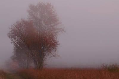 Photograph - Autumn Landscape 6 by Jim Vance