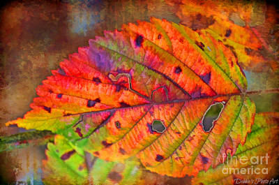Photograph - Autumn Leaf I - Digital Paint by Debbie Portwood