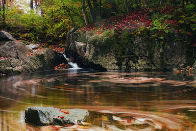 Autumn Leaf Trails Art Print