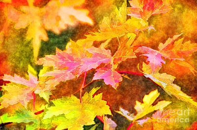 Photograph - Autumn Leaves - Digital Paint II by Debbie Portwood