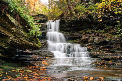 Autumn Leaves Below The Nameless Hidden Waterfall Art Print