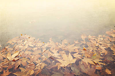 Autumn Leaves Floating In The Fog Print by Angela A Stanton