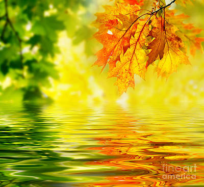 Autumn Leaves Images Art Print