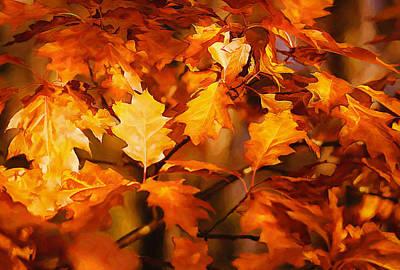 Autumn Leaves Oil Art Print by Steve Harrington