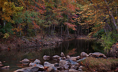 Photograph - Autumn Leaves Reflecting In The Stream by Todd Aaron