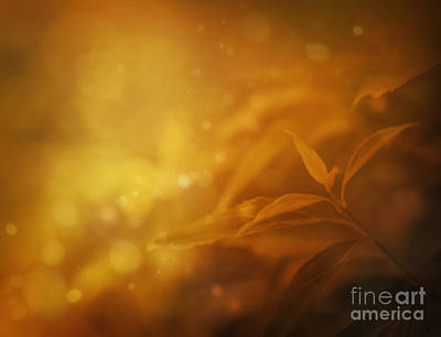 Mythja Digital Art - Autumn Leavesbackground by Mythja  Photography