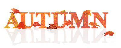 Element Photograph - Autumn Letters With Leaves by Amanda Elwell