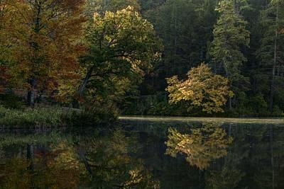 Photograph - Autumn Light by Carol Montoya