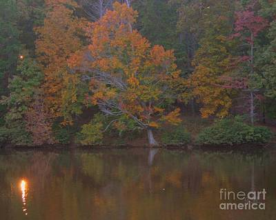 Photograph - Autumn Light by Geri Glavis