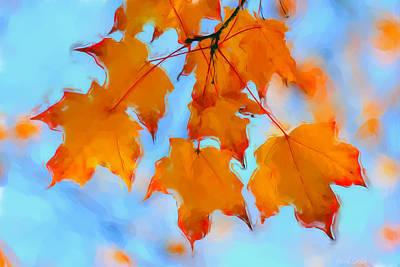 Macro Digital Art - Autumn Light by Heidi Smith