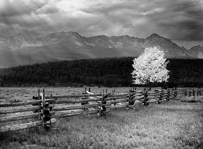 Old Fence Photograph - Autumn Light by Leland D Howard