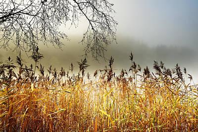 Photograph - Autumn Loch Ard  by Grant Glendinning