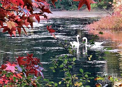 Photograph - Autumn Love by Janice Drew