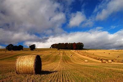 Photograph - Autumn by Macrae Images