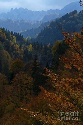 Photograph - Autumn Magic - Austria by Phil Banks