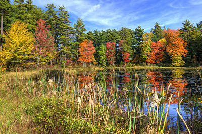 Lake Photograph - Autumn Magic by Donna Doherty