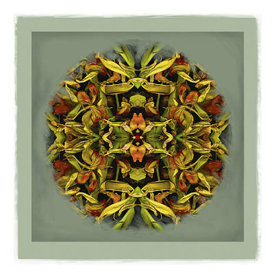 Photograph - Autumn Mandala by Ken Ketchum