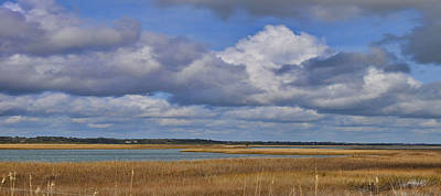 Photograph - Autumn Marsh At Shell Island by Paulette B Wright