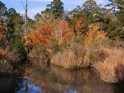 Photograph - Autumn Marsh by Bruce W Krucke