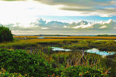 Autumn Marsh - Sullivans Island Art Print by Paulette B Wright