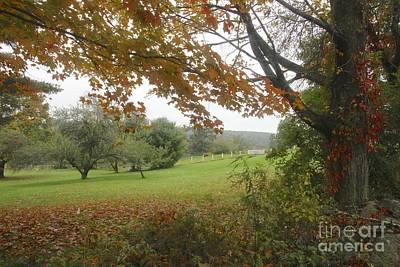 Autumn Meadow Art Print by Jim Gillen