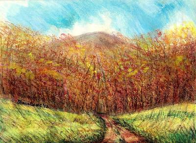 Maine Roads Drawing - Autumn Meadow by Shana Rowe Jackson