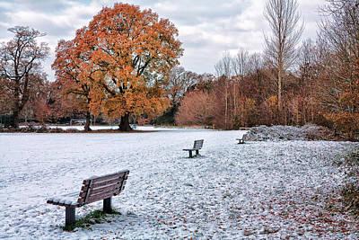 Photograph - Autumn Meet Winter by Shirley Mitchell