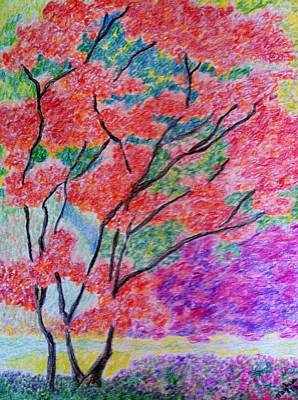 Changing Leaves Drawing - Autumn by Meghan