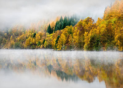 Autumn Woods Photograph - Autumn Mist by Dave Bowman