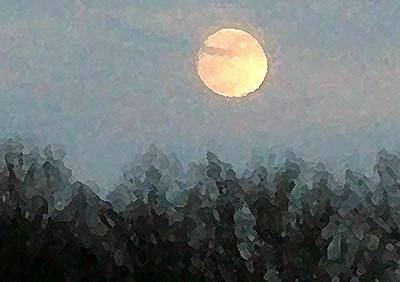 Autumn Moon Original by Wide Awake Arts