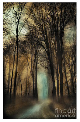 Photograph - Autumn Moonlight by Gina Signore