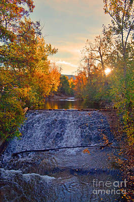 Photograph - Autumn Morning At Ellis Creek by Tara Turner