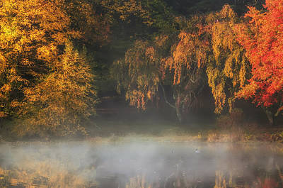 Photograph - Autumn Morning At The Lake by Gary Slawsky
