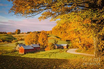 Photograph - Autumn Morning by Brian Jannsen