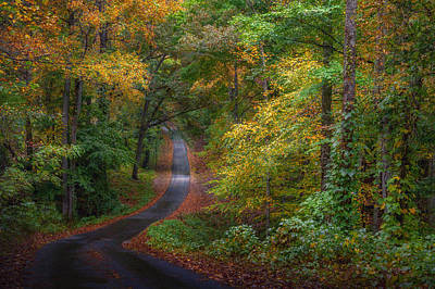 Photograph - Autumn Mountain Road by William Schmid