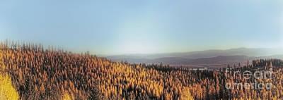 Montana Landscapes Photograph - Autumn Mountains by Janie Johnson