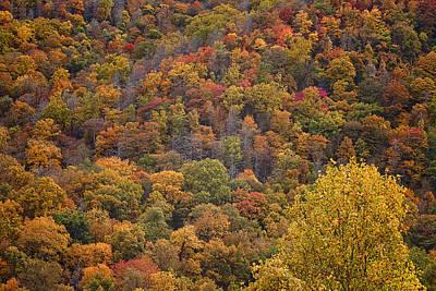 Autumn Mountainside Art Print by Andrew Soundarajan