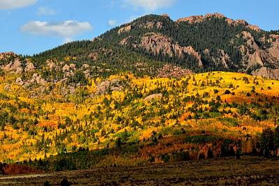 Photograph - Autumn Mountainside by Marilyn Burton