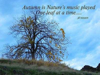 Photograph - Autumn Music by Jacqueline  DiAnne Wasson